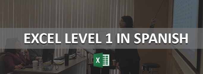 Excel Level 1 in Spanish